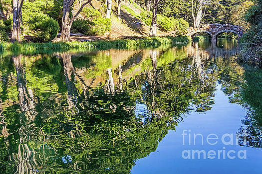 Rustic Reflections by Kate Brown