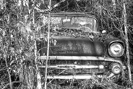 Brian Cole - Rusting Away