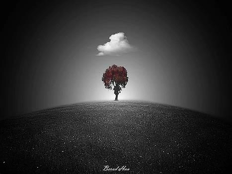 Sacred by Bernd Hau