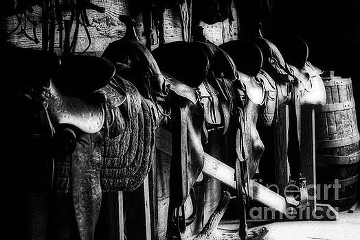 Saddles by Gary Richards