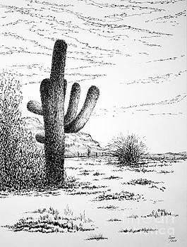 Saguaro by Igal Kogan