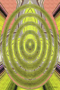 Saguaro Oval Abstract 9164ew1t by Tom Janca