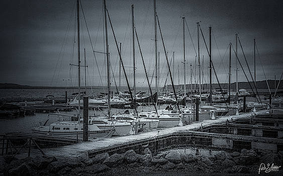 Sail Boat Marina 1 by Phil S Addis