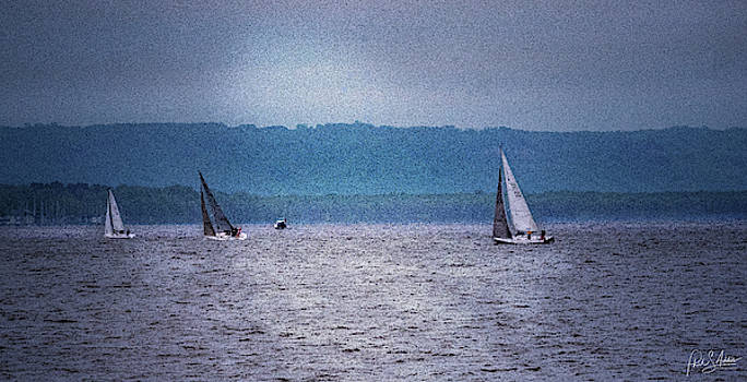 Sailboats 4 by Phil S Addis