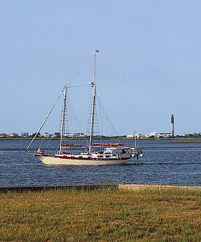 Sailing At Southport 4 by Cathy Lindsey
