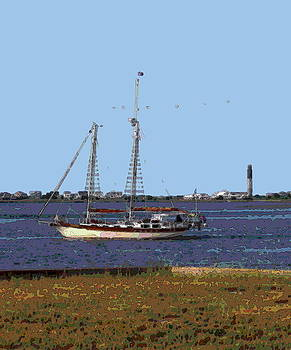 Sailing At Southport 5 by Cathy Lindsey