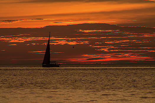 Sailing into tommorow by Johnathan Erickson