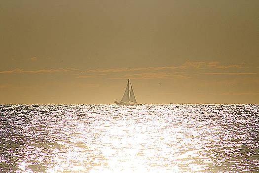 Sailing On Sunshine by Robert Banach