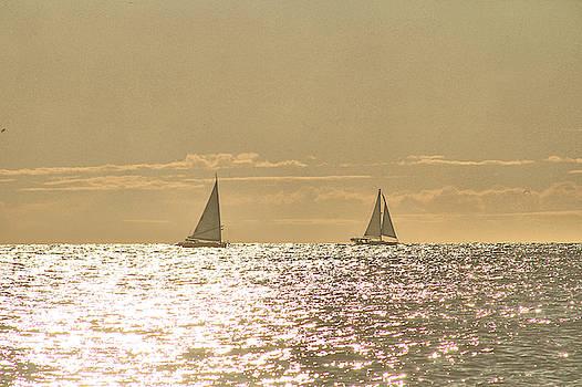 Sailing On The Horizon by Robert Banach
