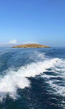 Sailing to Delos by Nicholas V K