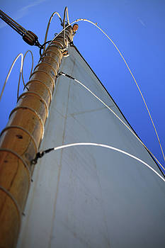 Sails Up by Karol Livote