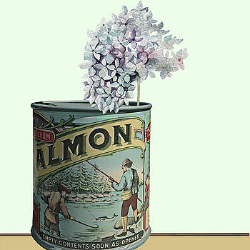 Salmon can with hydrangea by Jeff Burgess