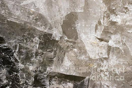 Salt Block by Nicki Hoffman