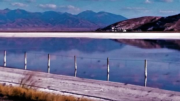 Salt Lakes in Utah by Peggy Leyva Conley