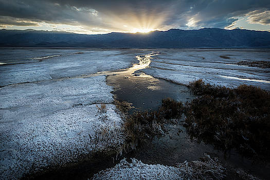 Salt of the Earth... by Kevin Evans