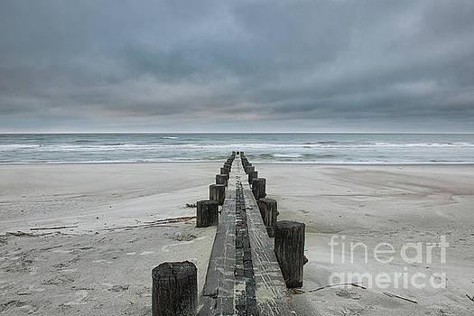 Salty Breeze - Folly Beach by Dale Powell