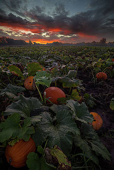 Samhain by Aaron J Groen