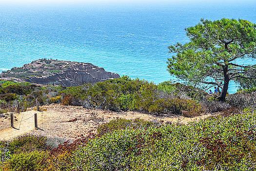 San Diego Coast by Debbie Ann Powell