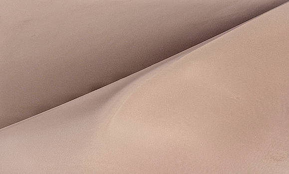 San Dunes Abstract 1 by Rand