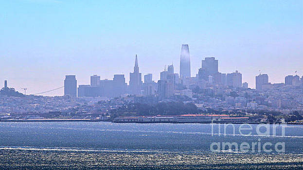 San Francisco From The Bay by Diann Fisher
