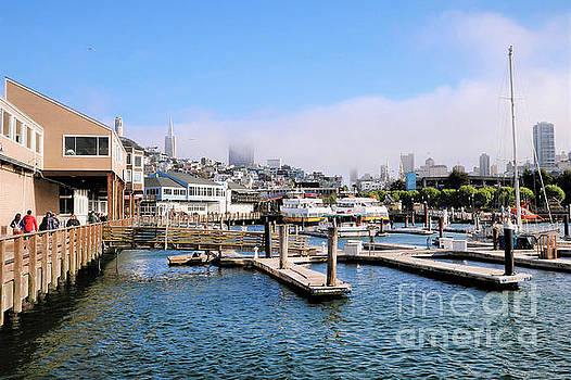 San Francisco From The Docks by Diann Fisher