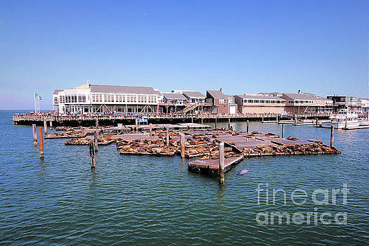 San Francisco Pier 39 by Diann Fisher