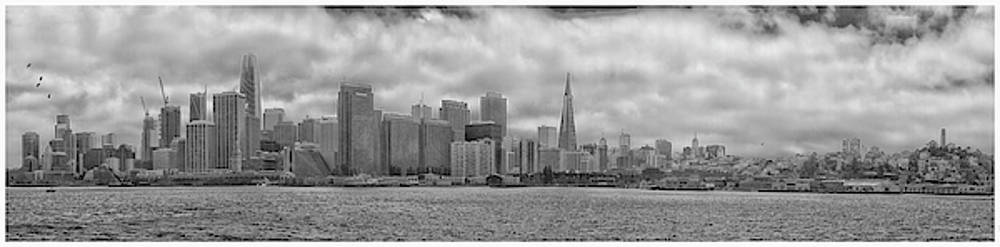 San Francisco Skyline black and white by Debby Richards
