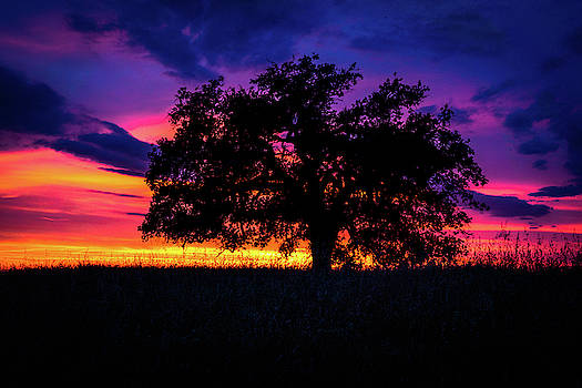 San Joaquin Valley Sunset by Dave Prendergast