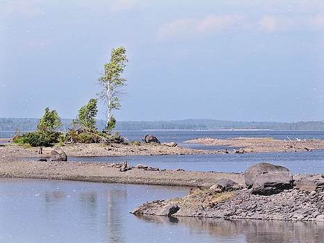 Sandbars Along Penobscot Bay by Robin Regan