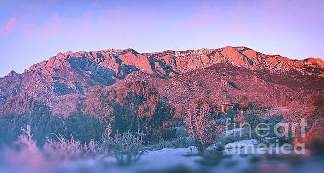 Sandia Mountain Sunset by Susan Warren