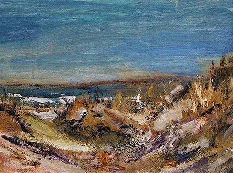 Sandy Neck Winter Scene by Michael Helfen