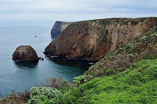 Santa Cruz Island Bluff Trail by Kyle Hanson
