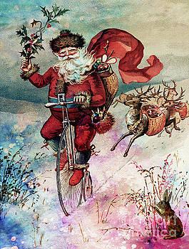 Santa Having Fun  by Tammera Malicki-Wong