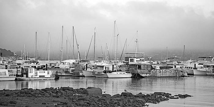 Sausalito California Harbor Morning bw by Betsy Knapp