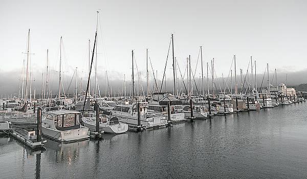 Sausalito California Peaceful Harbor by Betsy Knapp