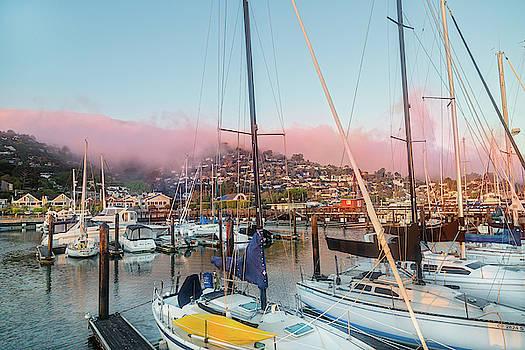 Sausalito California Pink Ribbon Morning by Betsy Knapp