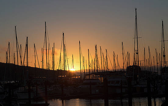Sausalito California Sunrise Gathering by Betsy Knapp