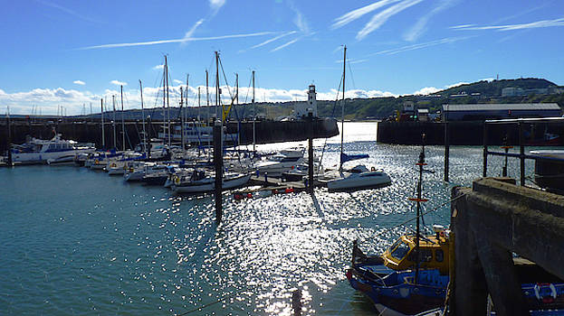 Scarborough Harbour, Yorkshire - Late Summer Sun by Chris Gill
