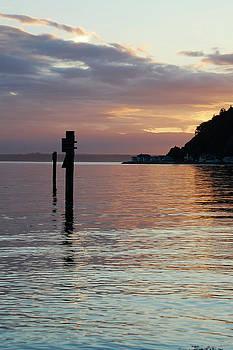 Tom Trimbath - Scatchet Sunset