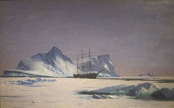 Scene in the Arctic  by MotionAge Designs