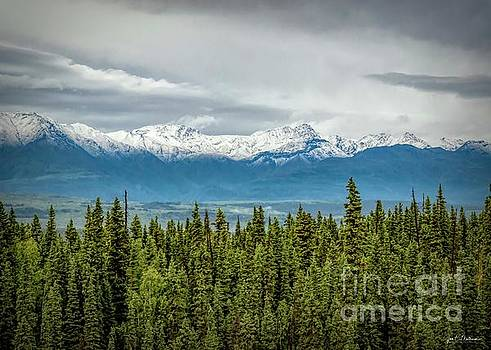 Scenic View in Chitina Alaska by Jan Mulherin