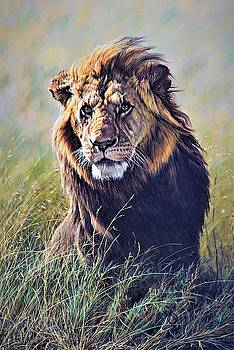 Scent on the Wind Lion Painting by Alan M Hunt by Alan M Hunt
