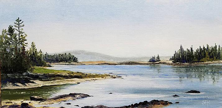 Schoodic View by Susan E Hanna