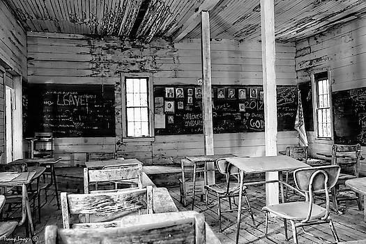 School of Ruin by Wesley Nesbitt