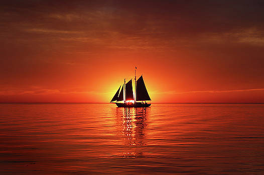 Schooner Eclipses the Sunset by David T Wilkinson