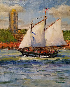 Schooner Mystic Whaler Cruising the Hudson  by Peter Salwen