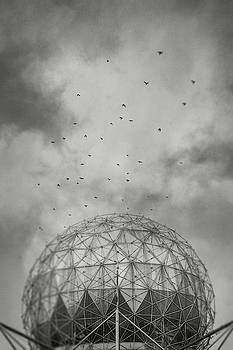 Science World and Crows, Vancouver, British Columbia by Illumina Photographics