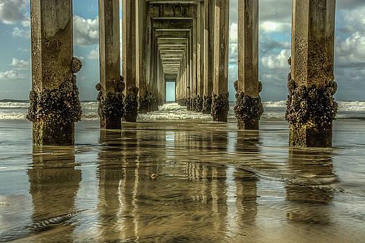 Scripps Pier California by Constance Puttkemery