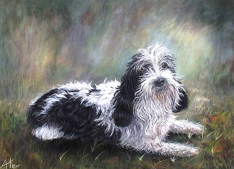 Scruffy by Anne Kerr