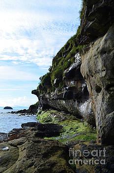 Sea Cliffs by DejaVu Designs